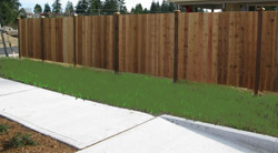 tacoma landscaping lawn installation